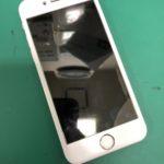 泉大津よりiPhone6のバッテリー交換依頼でのご来店(〃゚A゚)